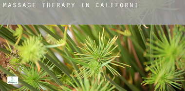 Massage therapy in  California