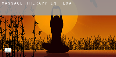 Massage therapy in  Texas